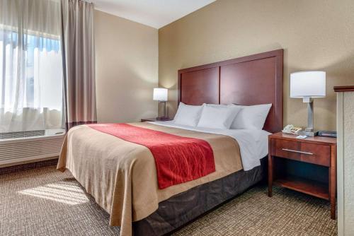 Indiana Hotels Comfort Inn Fremont
